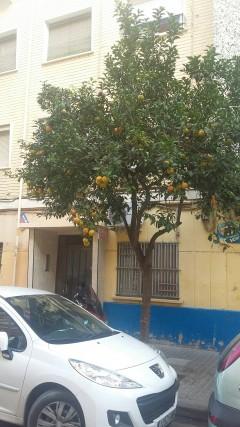 Super oferta: Se vende piso - Orriols, Valencia - 20 000 euros
